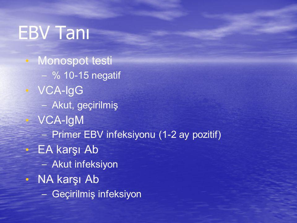 EBV Tanı Monospot testi VCA-IgG VCA-IgM EA karşı Ab NA karşı Ab