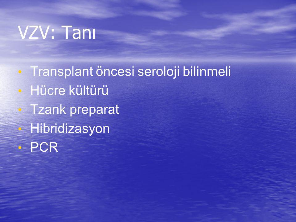 VZV: Tanı Transplant öncesi seroloji bilinmeli Hücre kültürü