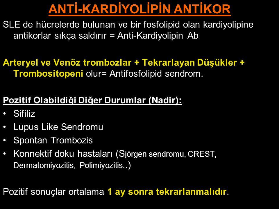 ANTİ-KARDİYOLİPİN ANTİKOR