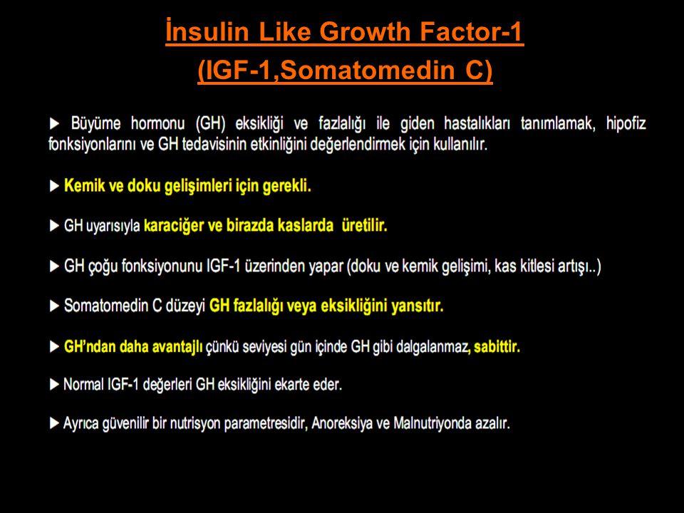 İnsulin Like Growth Factor-1