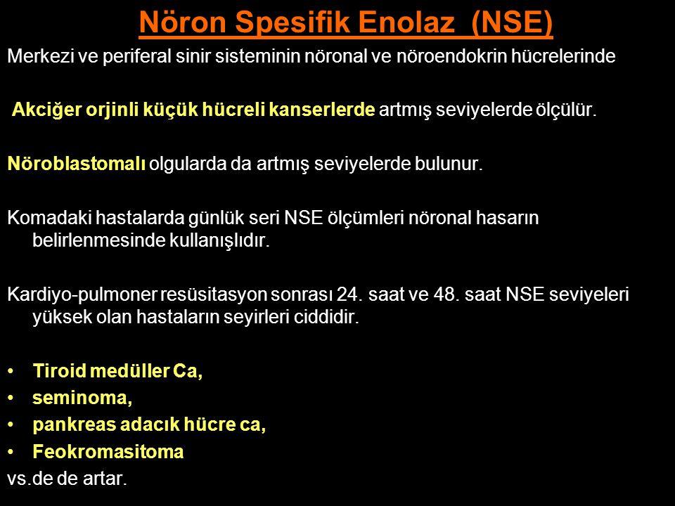 Nöron Spesifik Enolaz (NSE)