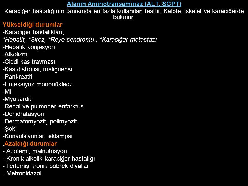 Alanin Aminotransaminaz (ALT, SGPT)