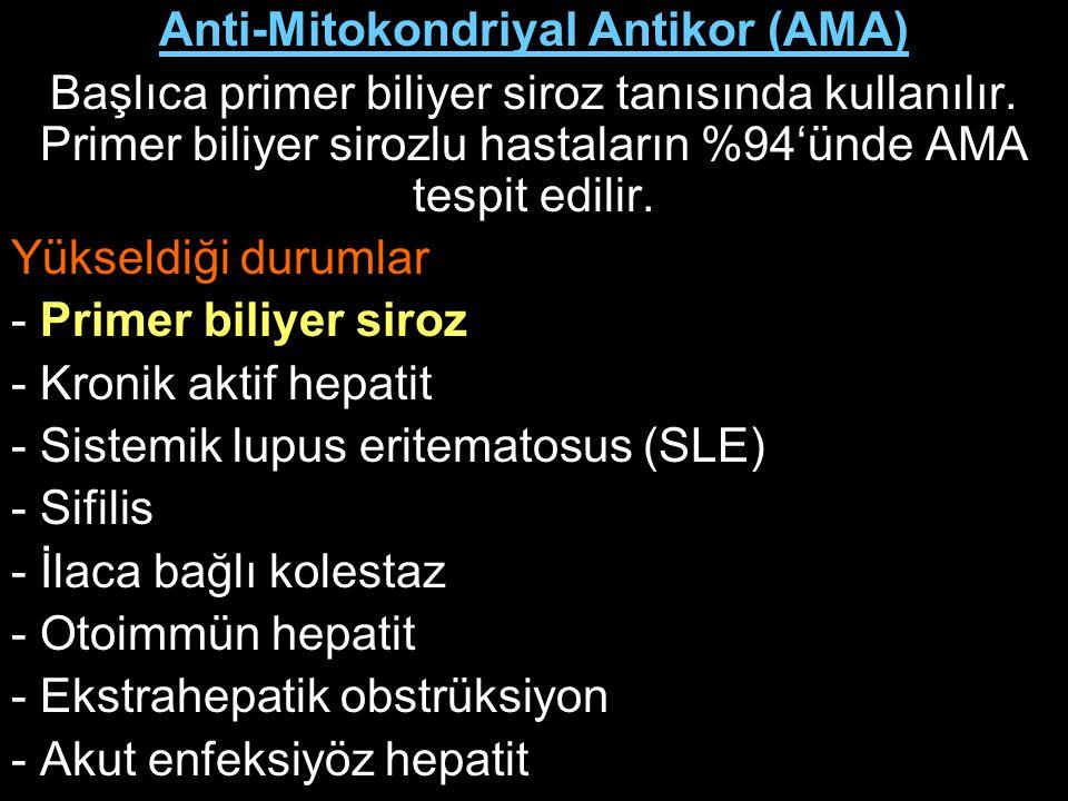 Anti-Mitokondriyal Antikor (AMA)