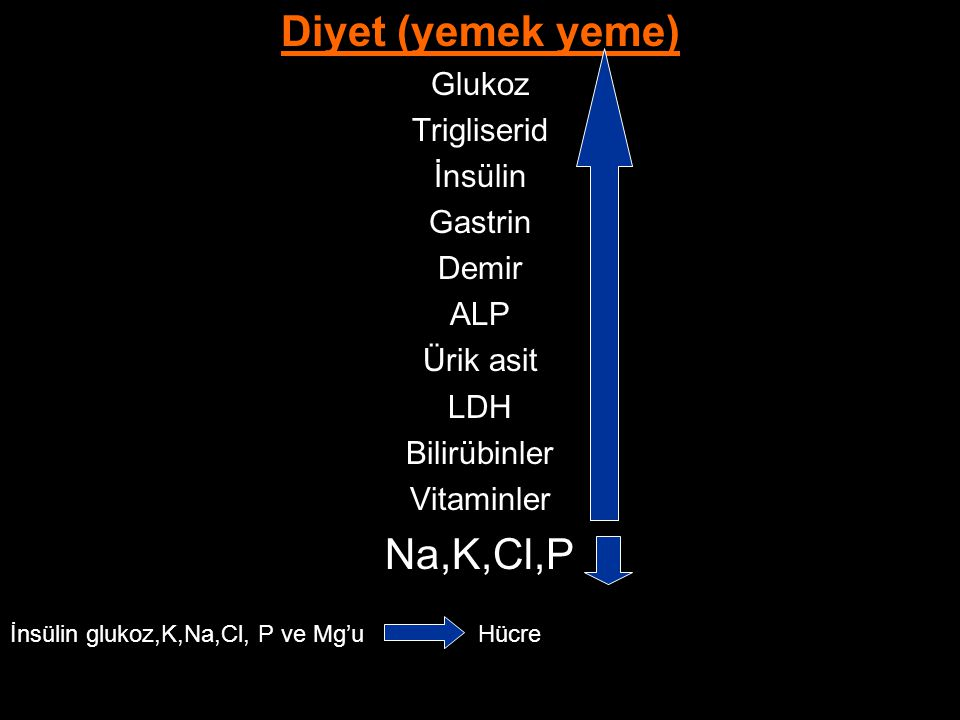 Diyet (yemek yeme) Na,K,Cl,P Glukoz Trigliserid İnsülin Gastrin Demir