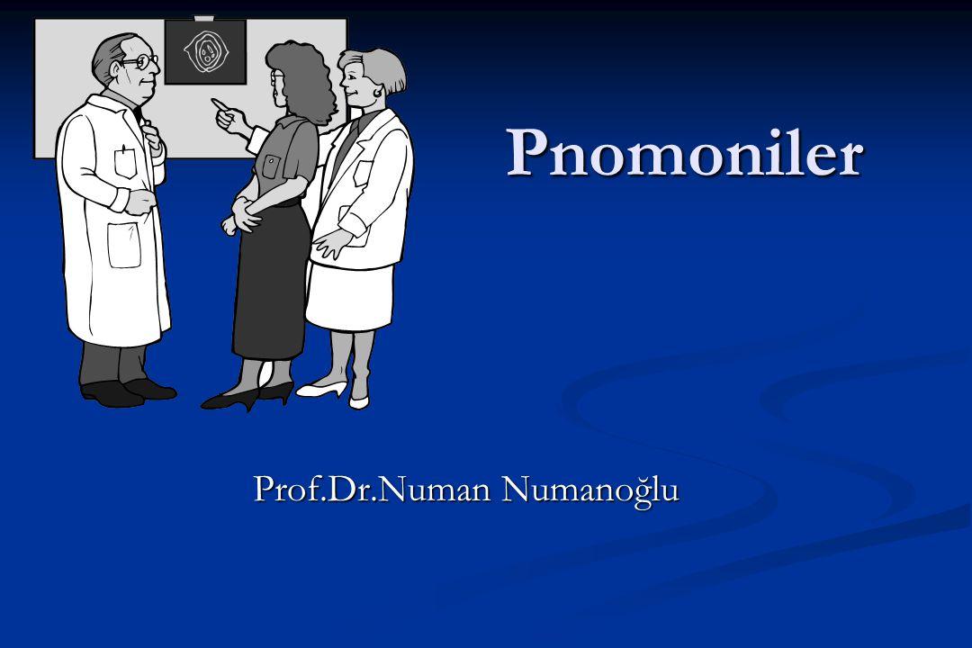 Prof.Dr.Numan Numanoğlu