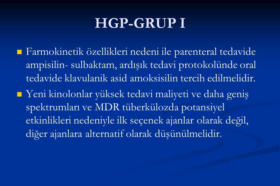 HGP-GRUP I