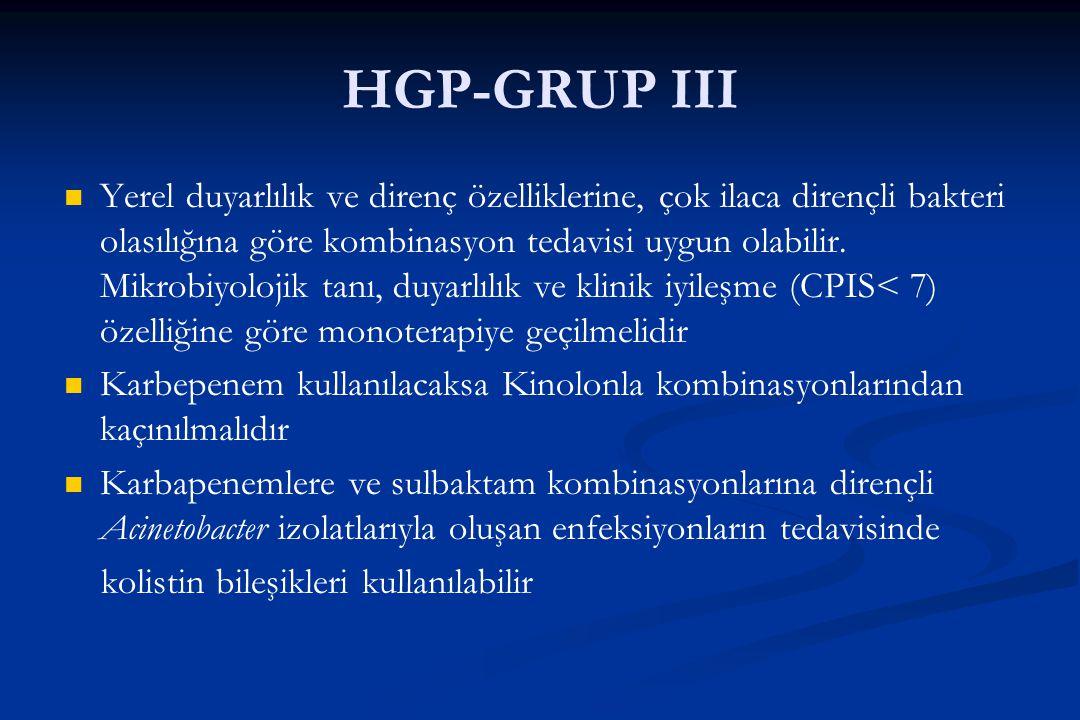 HGP-GRUP III