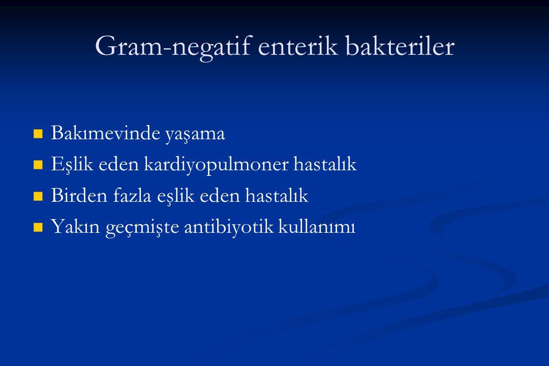 Gram-negatif enterik bakteriler