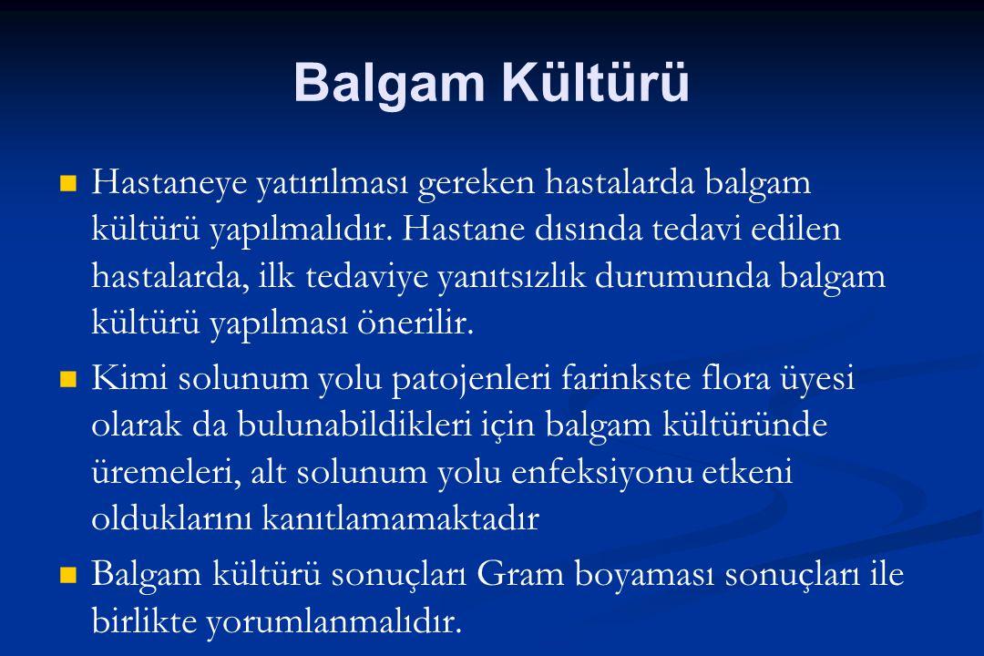 Balgam Kültürü