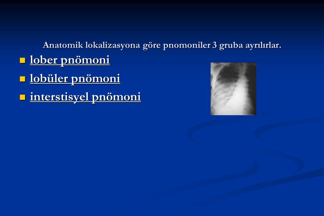 Anatomik lokalizasyona göre pnomoniler 3 gruba ayrılırlar.