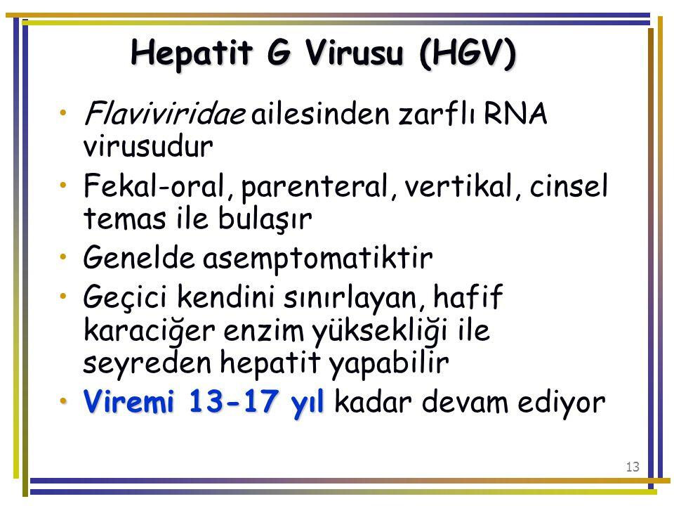 Hepatit G Virusu (HGV) Flaviviridae ailesinden zarflı RNA virusudur