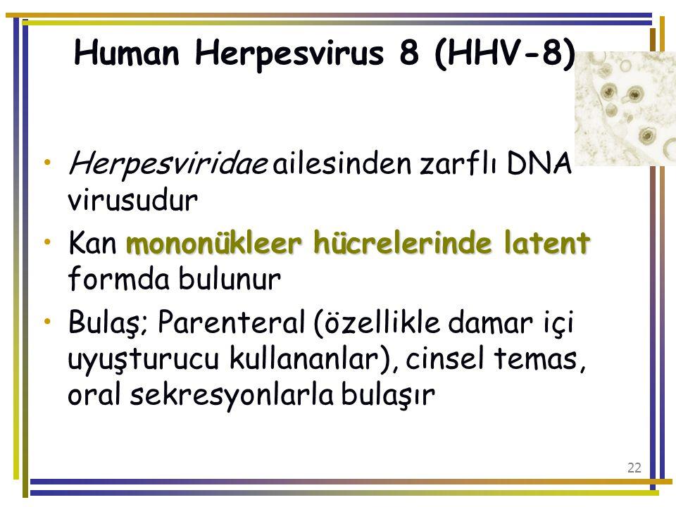 Human Herpesvirus 8 (HHV-8)