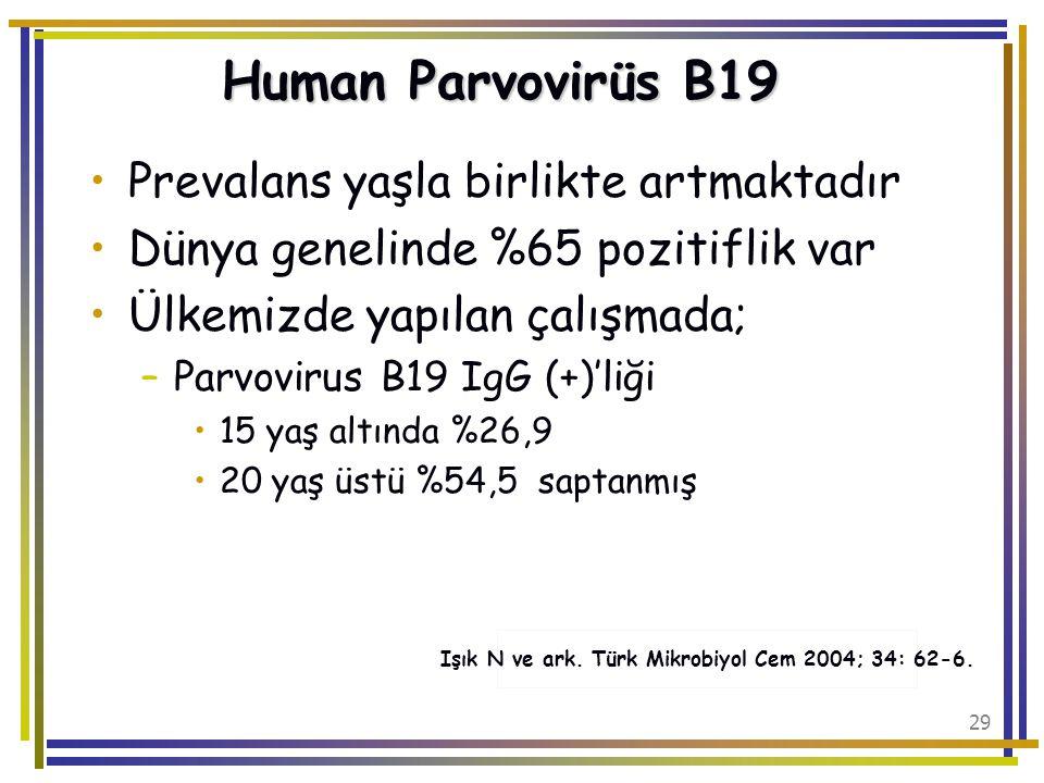 Işık N ve ark. Türk Mikrobiyol Cem 2004; 34: 62-6.