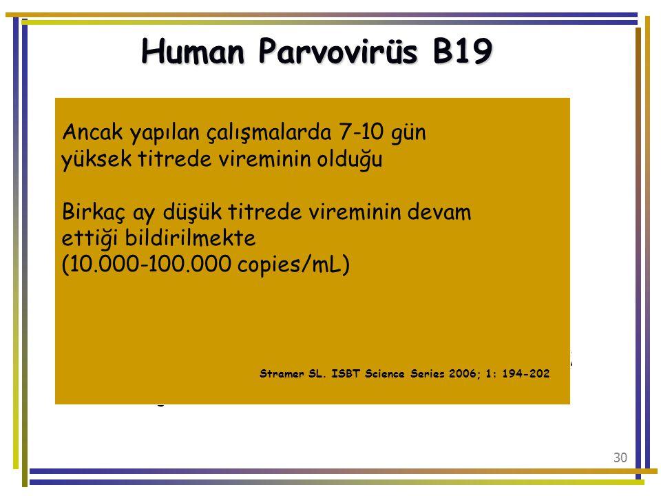 Human Parvovirüs B19 Viremi kısa sürdüğünden kan transfüzyonlarında sorun olmaz. Ancak çoklu donörden hazırlanan plazma havuzları kontamine olabilir.