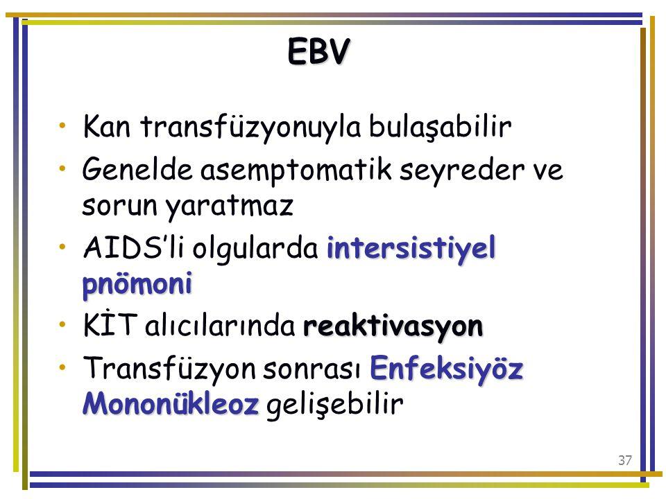 EBV Kan transfüzyonuyla bulaşabilir