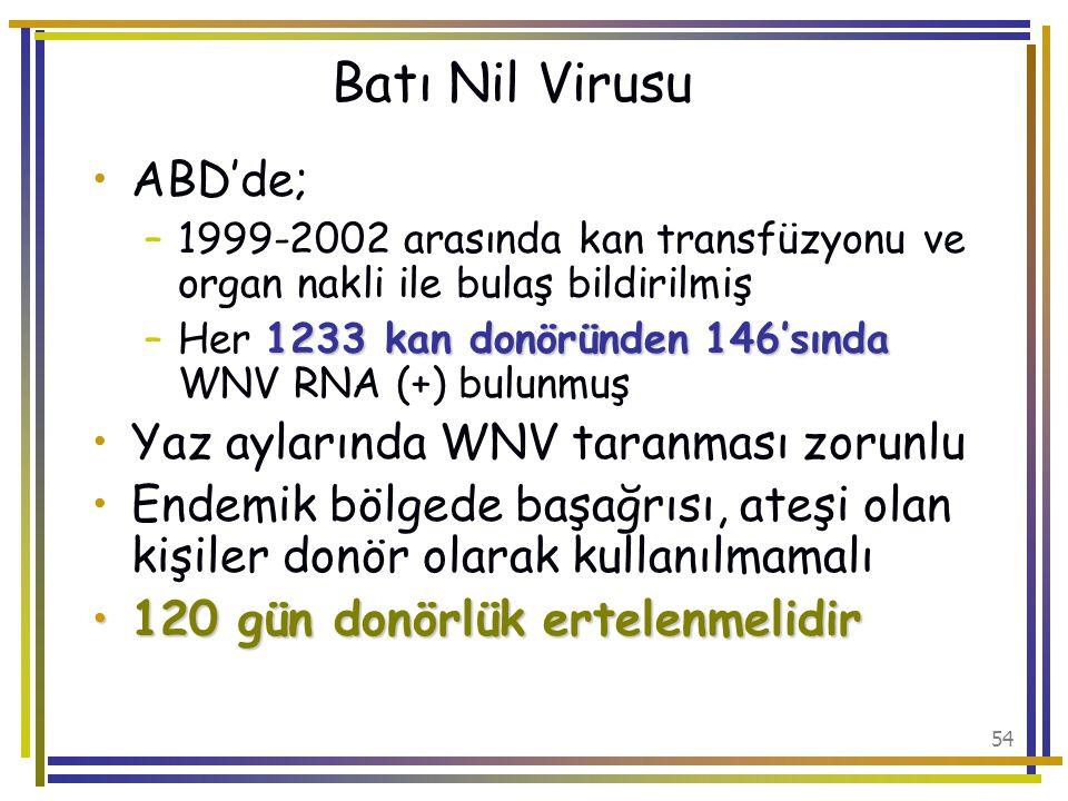 Batı Nil Virusu ABD'de; Yaz aylarında WNV taranması zorunlu