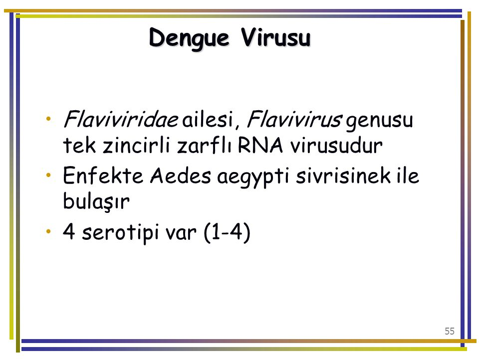 Dengue Virusu Flaviviridae ailesi, Flavivirus genusu tek zincirli zarflı RNA virusudur. Enfekte Aedes aegypti sivrisinek ile bulaşır.
