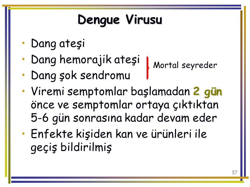 Dengue Virusu Dang ateşi Dang hemorajik ateşi Dang şok sendromu