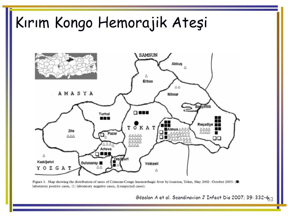 Kırım Kongo Hemorajik Ateşi