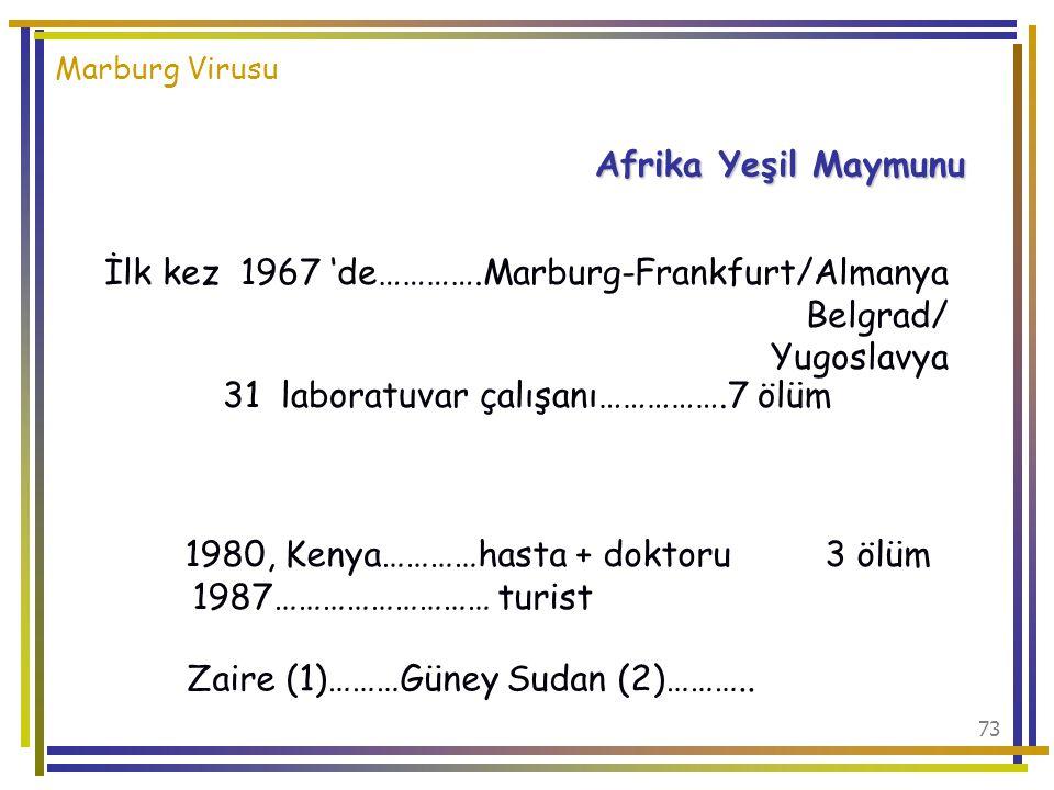 İlk kez 1967 'de………….Marburg-Frankfurt/Almanya Belgrad/ Yugoslavya
