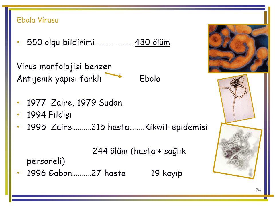 550 olgu bildirimi…………………430 ölüm Virus morfolojisi benzer