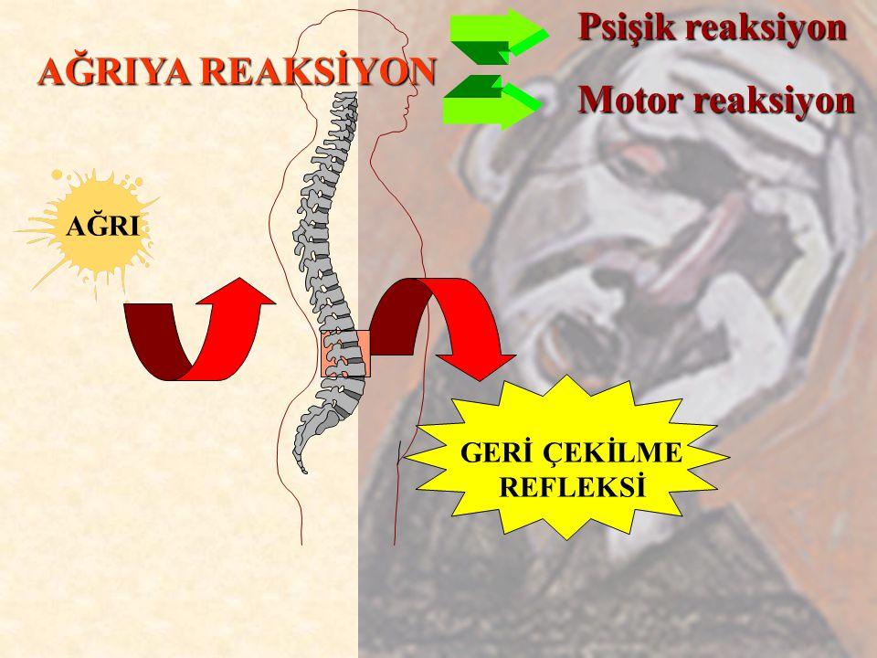 Psişik reaksiyon AĞRIYA REAKSİYON Motor reaksiyon AĞRI GERİ ÇEKİLME