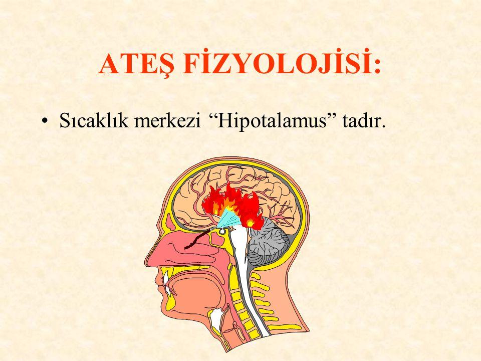 ATEŞ FİZYOLOJİSİ: Sıcaklık merkezi Hipotalamus tadır.