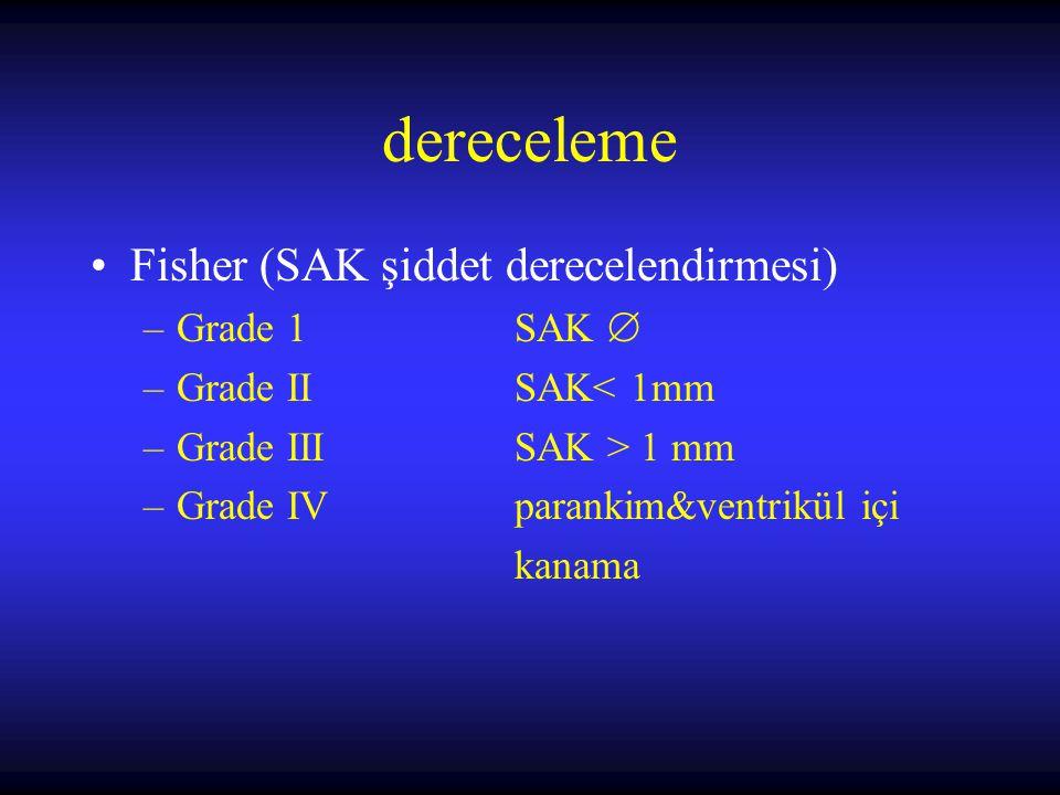 dereceleme Fisher (SAK şiddet derecelendirmesi) Grade 1 SAK 
