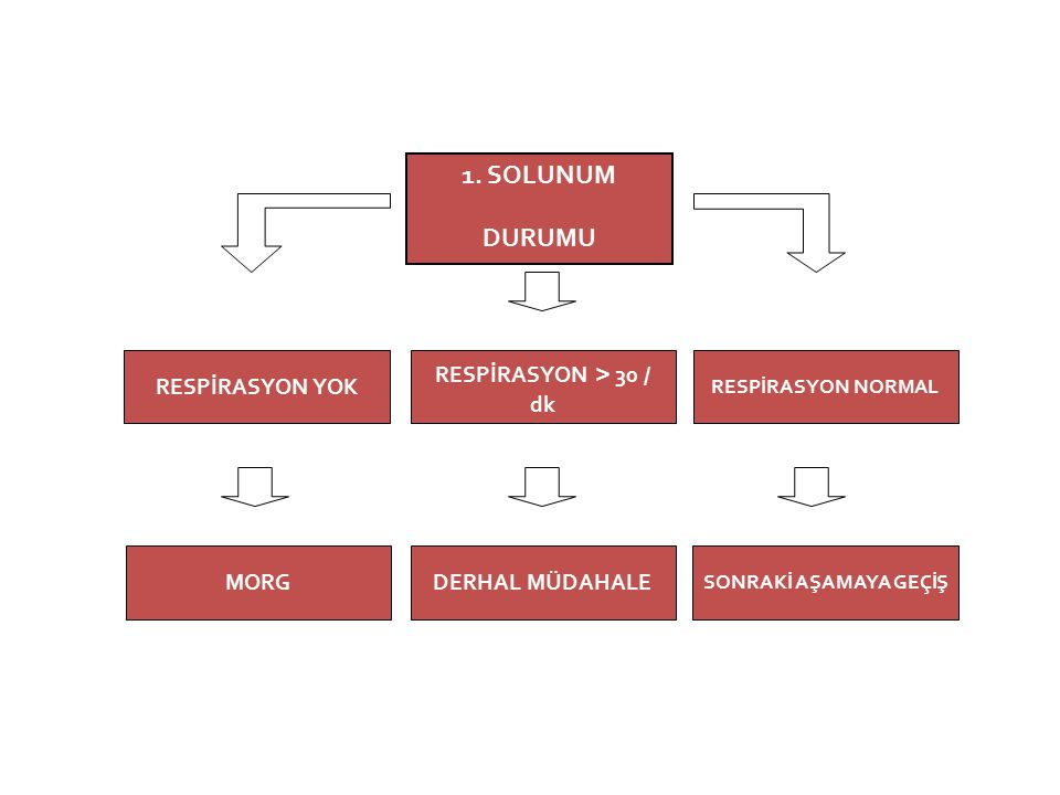 1. SOLUNUM DURUMU RESPİRASYON > 30 / dk DERHAL MÜDAHALE