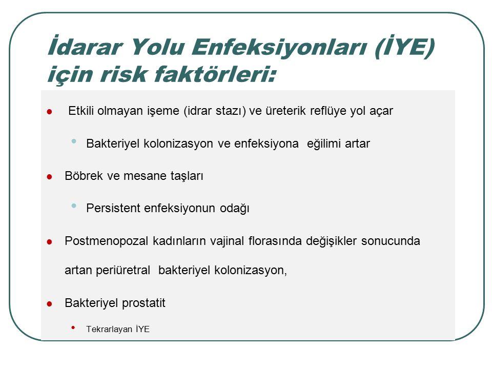 İdarar Yolu Enfeksiyonları (İYE) için risk faktörleri: