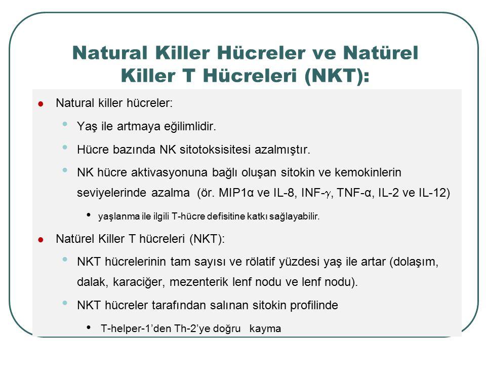 Natural Killer Hücreler ve Natürel Killer T Hücreleri (NKT):