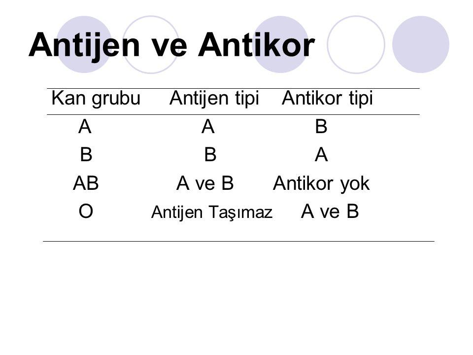 Antijen ve Antikor Kan grubu Antijen tipi Antikor tipi A A B B B A