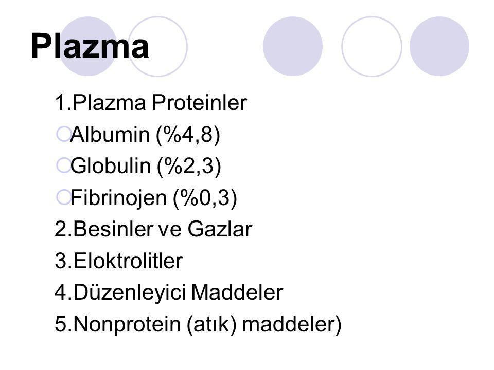 Plazma 1.Plazma Proteinler Albumin (%4,8) Globulin (%2,3)