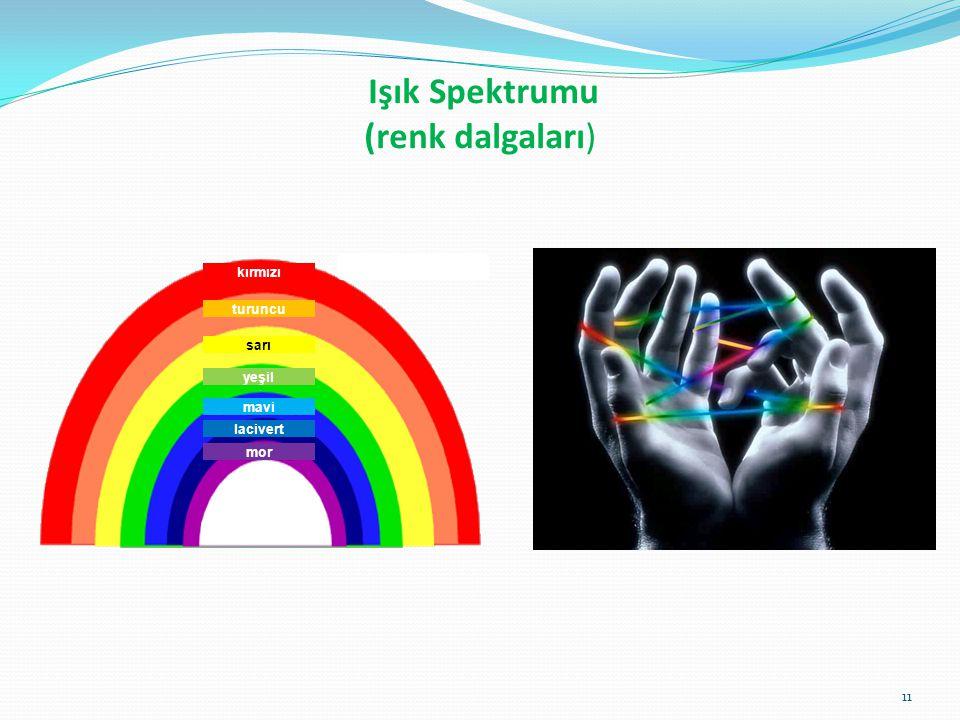 Işık Spektrumu (renk dalgaları)