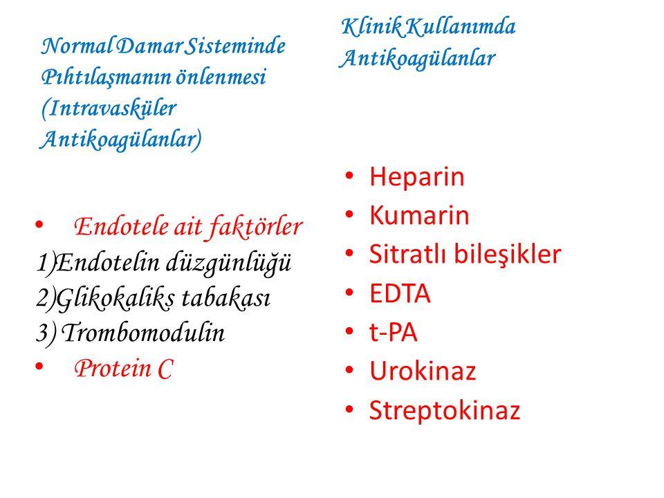 Endotele ait faktörler 1)Endotelin düzgünlüğü 2)Glikokaliks tabakası