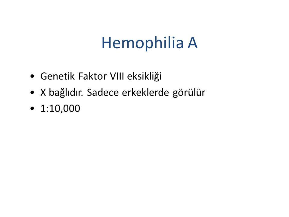Hemophilia A Genetik Faktor VIII eksikliği