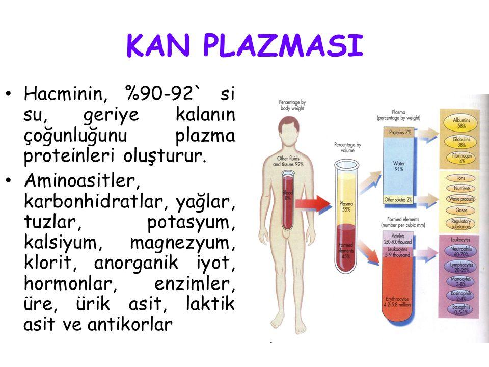 KAN PLAZMASI Hacminin, %90-92` si su, geriye kalanın çoğunluğunu plazma proteinleri oluşturur.