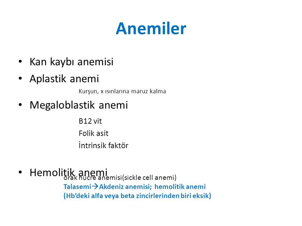 Anemiler Kan kaybı anemisi Aplastik anemi Megaloblastik anemi