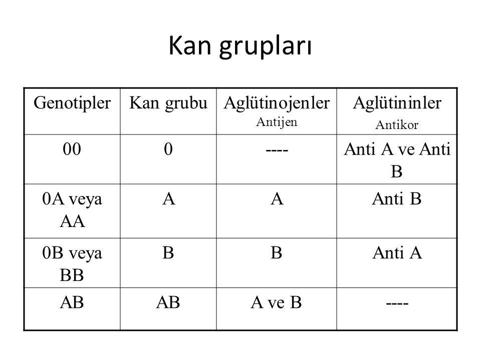 Aglütinojenler Antijen