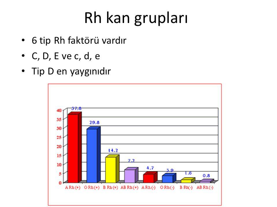 Rh kan grupları 6 tip Rh faktörü vardır C, D, E ve c, d, e