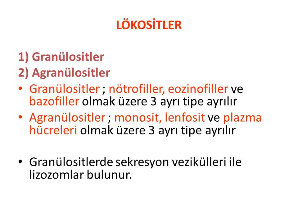 LÖKOSİTLER 1) Granülositler. 2) Agranülositler. Granülositler ; nötrofiller, eozinofiller ve bazofiller olmak üzere 3 ayrı tipe ayrılır.