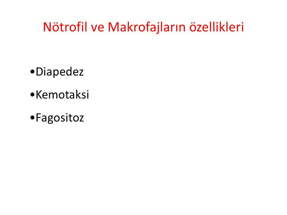 Nötrofil ve Makrofajların özellikleri