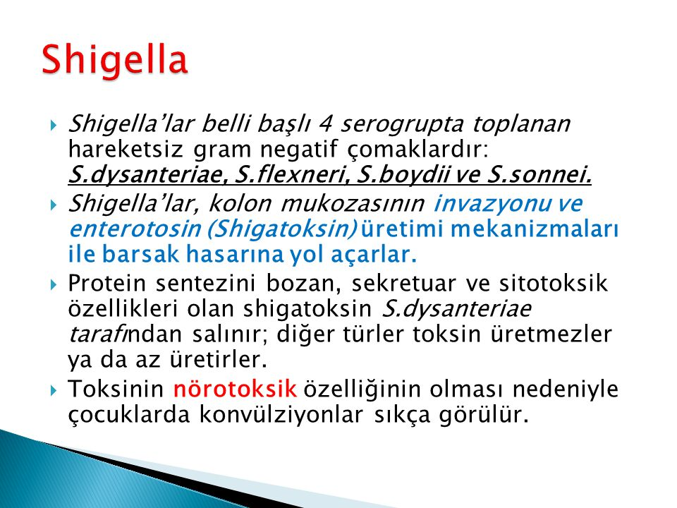 Shigella Shigella'lar belli başlı 4 serogrupta toplanan hareketsiz gram negatif çomaklardır: S.dysanteriae, S.flexneri, S.boydii ve S.sonnei.