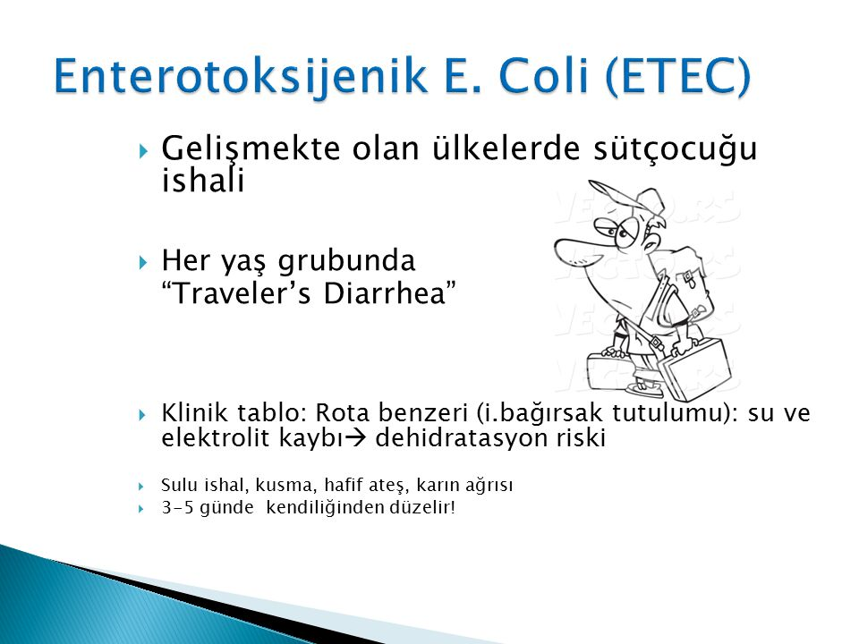 Enterotoksijenik E. Coli (ETEC)