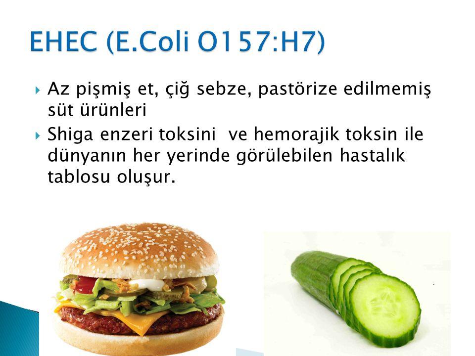EHEC (E.Coli O157:H7) Az pişmiş et, çiğ sebze, pastörize edilmemiş süt ürünleri.