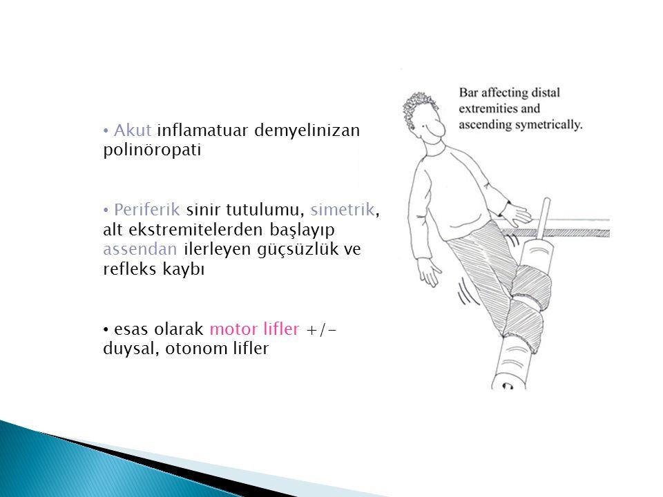 Akut inflamatuar demyelinizan polinöropati