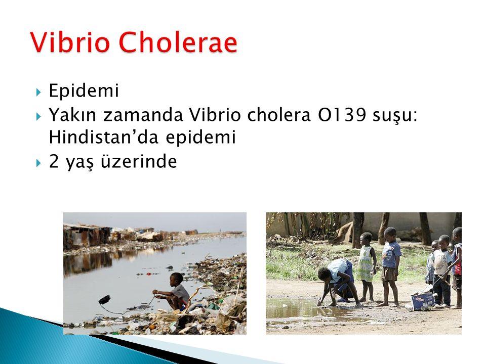 Vibrio Cholerae Epidemi