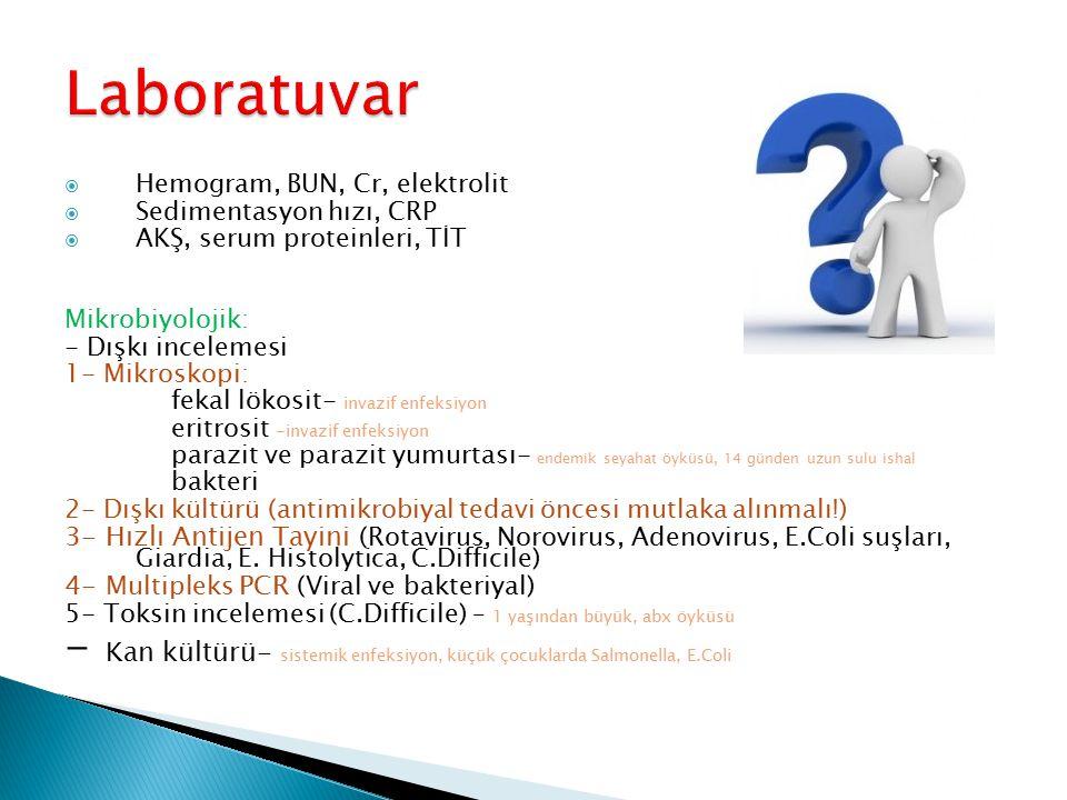 Laboratuvar Hemogram, BUN, Cr, elektrolit. Sedimentasyon hızı, CRP. AKŞ, serum proteinleri, TİT. Mikrobiyolojik: