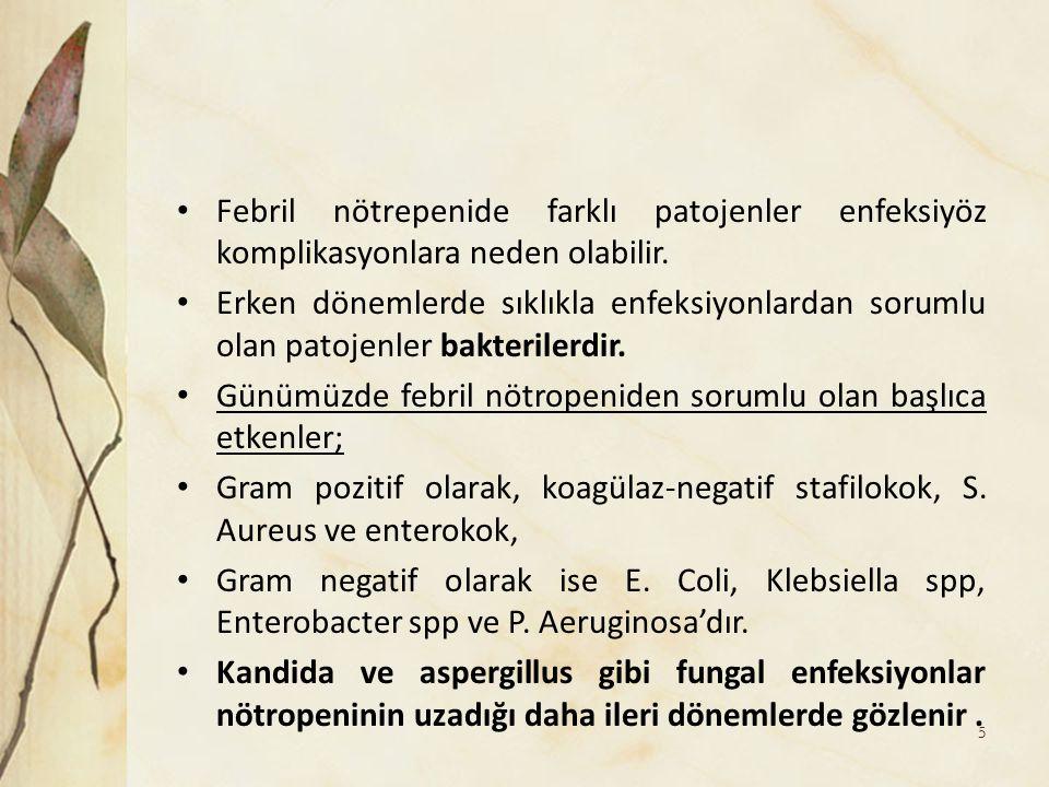 Febril nötrepenide farklı patojenler enfeksiyöz komplikasyonlara neden olabilir.