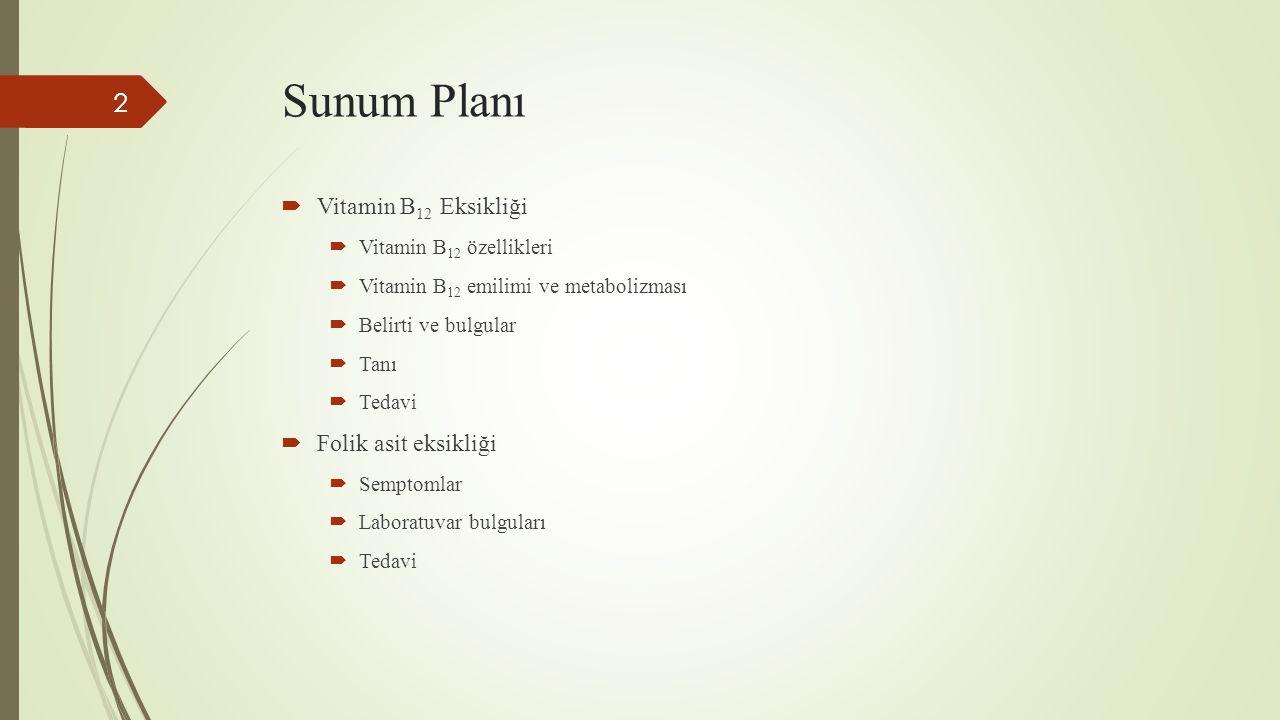 Sunum Planı Vitamin B12 Eksikliği Folik asit eksikliği
